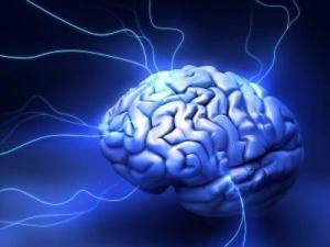 Mối quan hệ giữa giấc ngủ và lớp vỏ não
