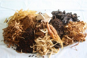 Một số bài thuốc Đông y trị viêm gan của Vương Thị
