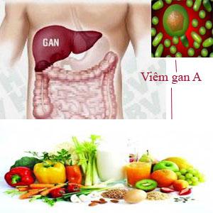 Bệnh viêm gan A được tìm thấy ở khắp nơi trên thế giới
