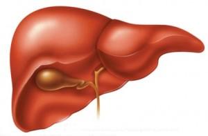 Một số biện pháp phòng ngừa bệnh viêm gan