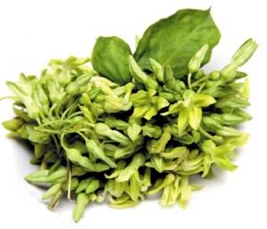 Có nhiều loại rau củ giúp bạn chữa bệnh trĩ nội