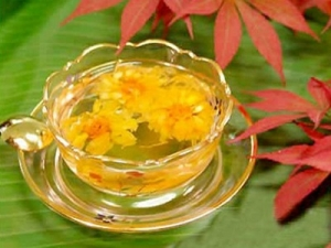Thuốc chữa bệnh trĩ từ các loại thảo dược