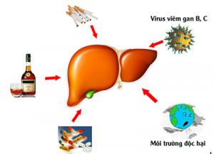 Biểu hiện của viêm gan C