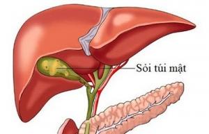 Tìm hiểu về tạng gan và túi mật